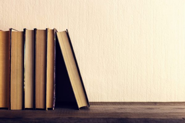 The Bible as Literature in the Seminary and Pulpit